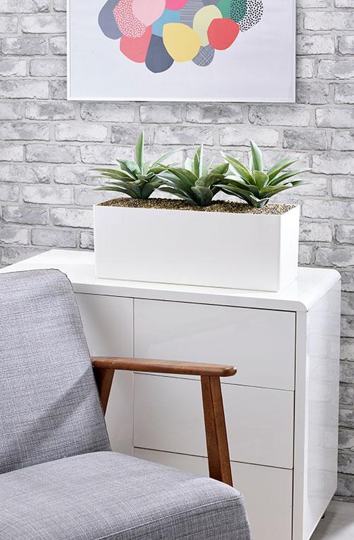 prospect plants agave cabinet trough