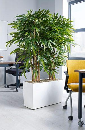 prospect plants bamboo floor trough