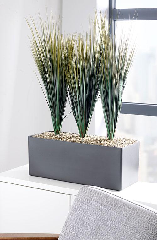 prospect plants savannah grass cabinet trough